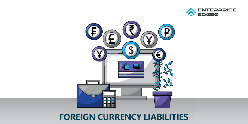 Foreign Currency Liabilities